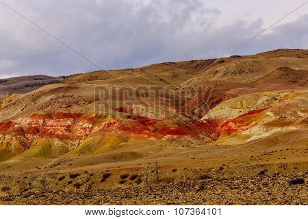 Mountains Steppe Desert Color
