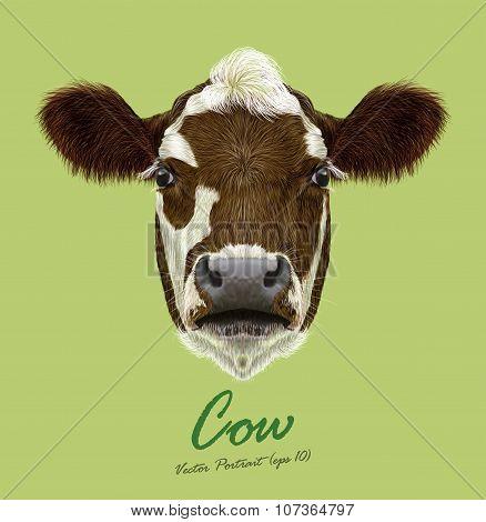 Vector Illustraited Portrait Of Cow