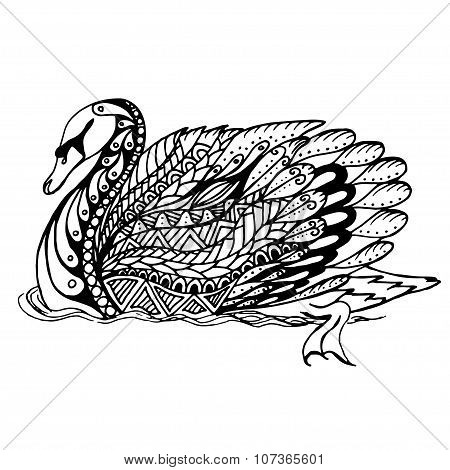 Hand drawn swan on water for anti stress coloring page with high details.