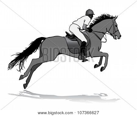 Rider On Horse 3