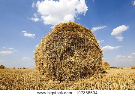 stack of straw in the field
