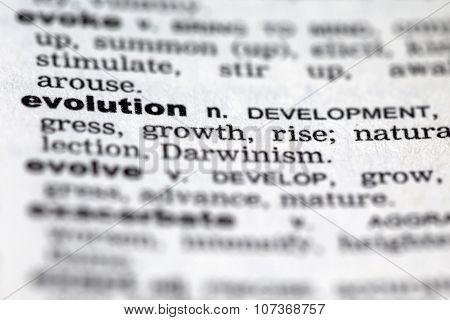 Dictionary Details