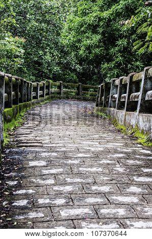 Hill stone path