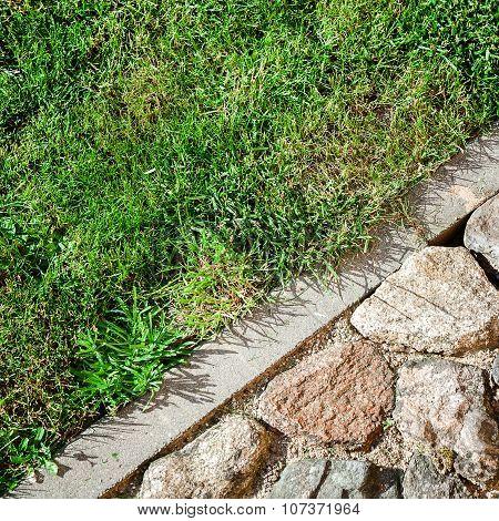 Cobblestone And Grass
