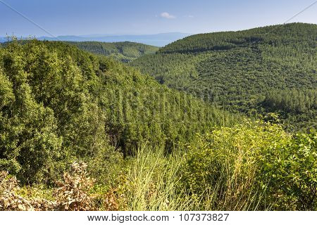 Halkidiki Landscape, Chalkidiki, Central Macedonia, Greece