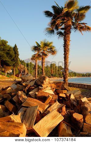 Firewood on a beach in Bar, Montenegro. In Montenegro there is no central heating and in the winter many buildings are heated by firewood