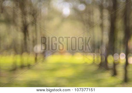 Blur park