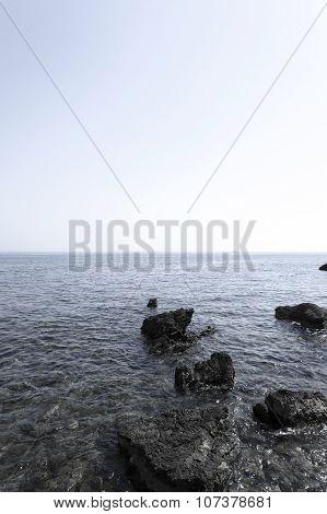 close-up. Adriatic Sea