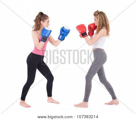 Kickboxing girl fight