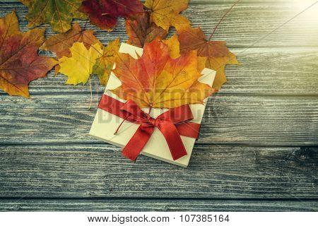 Autumn Gift On Wooden Background