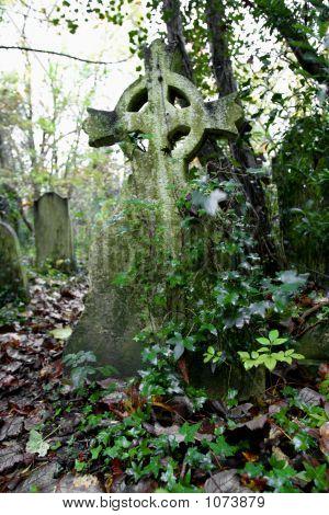 Cross In Overgrown Grave Yard