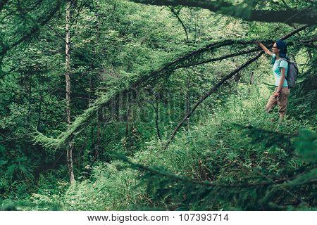 Hiker Woman Resting Near The Tree