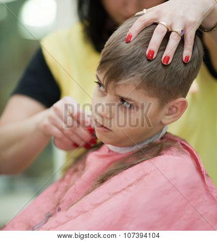 Cute Young Boy Getting Haircut