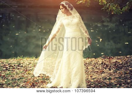 Bride Outdoor In Autumn