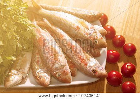 Raw Red Mullet
