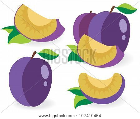 Fresh Plums Vector Illustrations