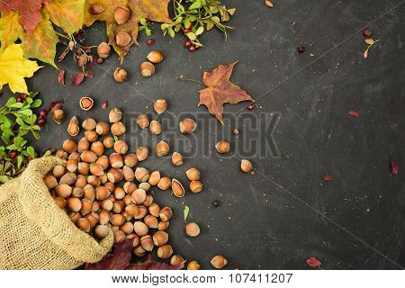 Hazelnuts in a sack with autumn leaves and dried berries, space for text.