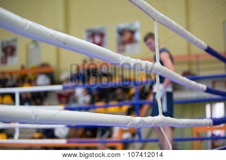 Boxer In The Blue Corner