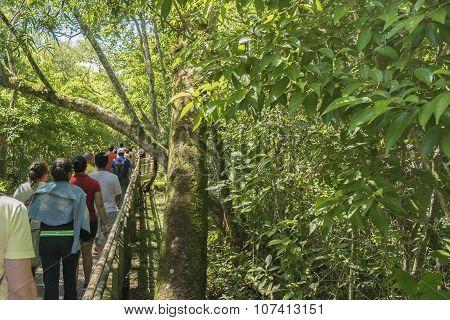 People Walking Along A Path At Iguazu Park