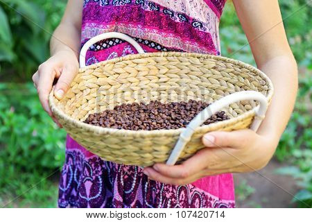Woman carries wattled basket with roasted coffee beans