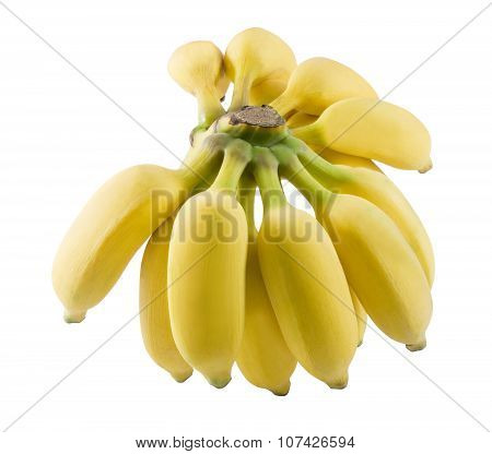 Ripe And Sweet Banana Fruits On A White Background