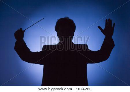 Silueta del Conductor
