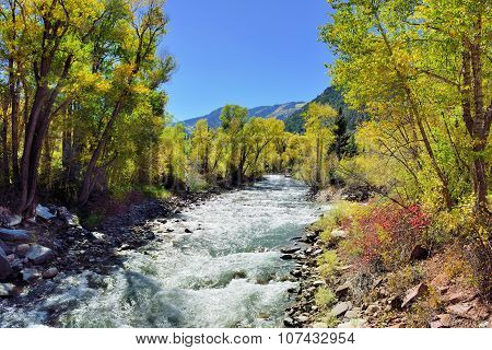 Alpine River And Yellow Aspen