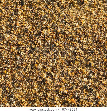 Sea sand beach texture.