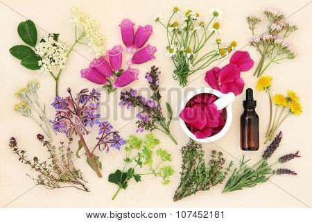 Medicinal flower and herb selection with dropper bottle and mortar with pestle, used in alternative herbal medicine over handmade cream paper background.
