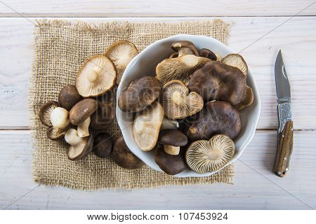 King Tumpet Mushrooms On The Table Of The Kitchen