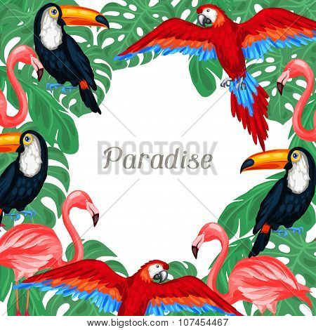 Tropical birds background design with palm leaves