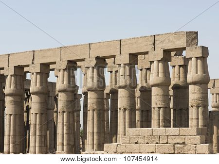 Columns In An Ancient Egyptian Temple