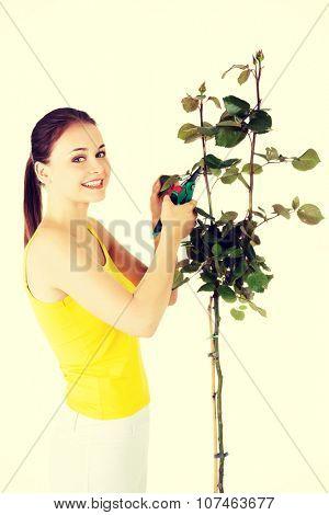 Happy gardener using pruning scissors