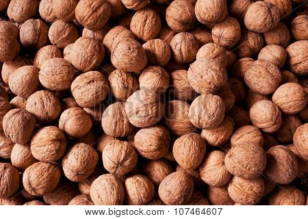 Walnuts as a background