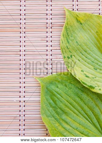 Green Leaves With Veins On The Bamboo Mat