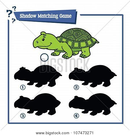 funny shadow turtle game.