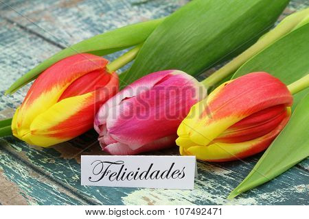 Felicidades (which means Congratulations in English) with colorful tulips on rustic wooden surface