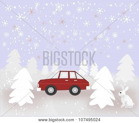 Car and Rabbit in Snowy Weather