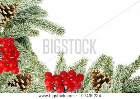 Green Christmas Tree With Cones And Rowan Isolated On White