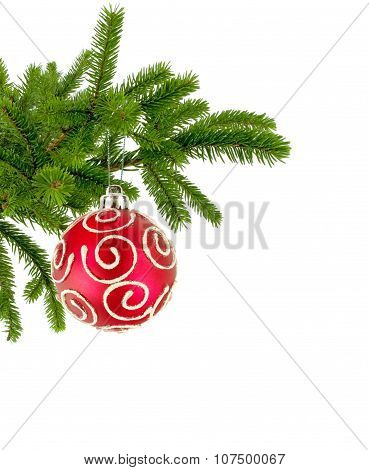Christmas Tree Branch With Red Decorate Ball Isolated On White