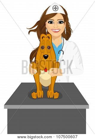 bloodhound sitting on table visiting veterinarian