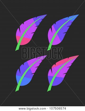 bright colored feathers set