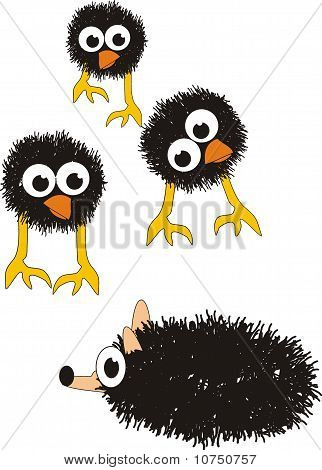 Grotesque surprised chicks and hedgehog