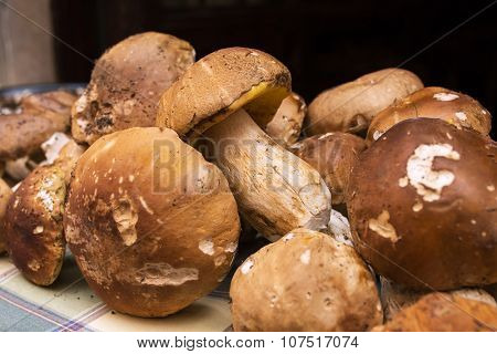 Close up bunch of Porcini mushrooms at the market in Italy