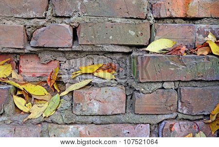 Abstract Background. A Brick Wall With Dry Leaves.
