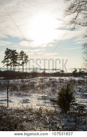 Sunny Winter Landscape By Norwegian Fjord