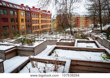 Communal Vegetable Gardens In Gothenburg In Snow