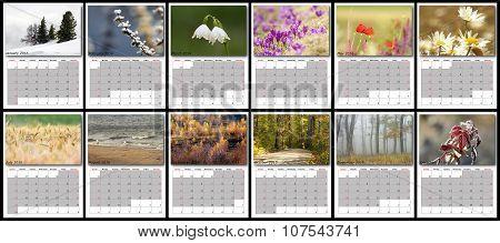 Nature Calendar Year 2016
