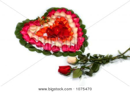 Heart Made By Rose-Petals And Rose Flowers