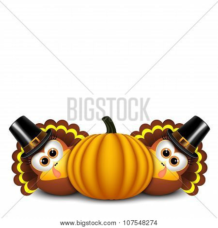 Thanksgiving turkeys with pilgrim hat and pumpkin